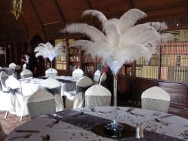 martini feathers ettington - Copy